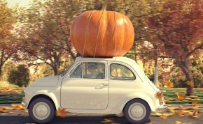Car with Pumpkin